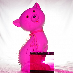 The Honl Photo Professional Lighting System - Follies Pink